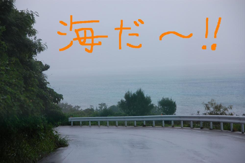 海へ 2009.11.18
