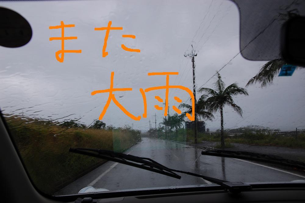 雨2 2009.11.18