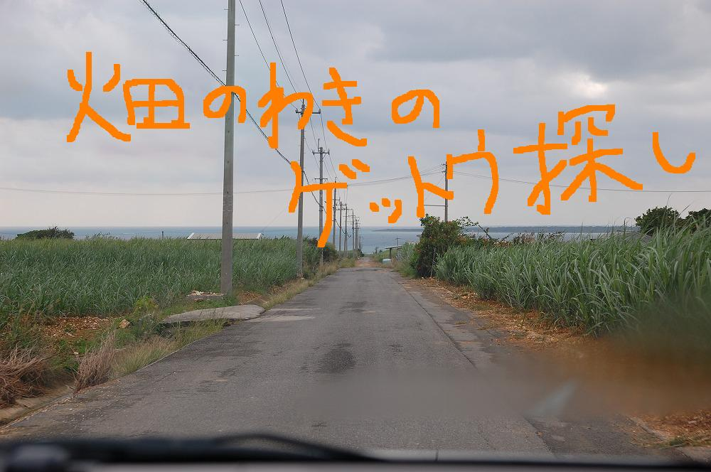 海側へ 2009.11.19