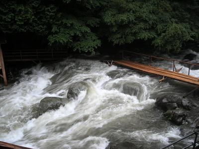 大雨で増水した川