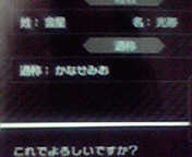 20090429persona-name
