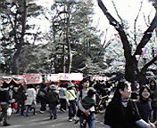 20100403hanami1