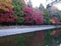 五十鈴川に写る紅葉