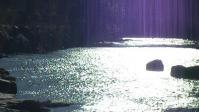 青紫光のシャワー2