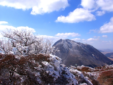 山頂の霧氷と由布岳P1011460