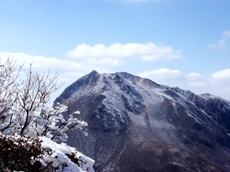山頂の霧氷と由布岳2P1011461