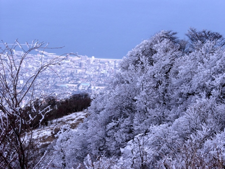 山頂裏の霧氷P1011498