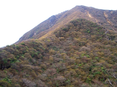 南峰への尾根CIMG0278