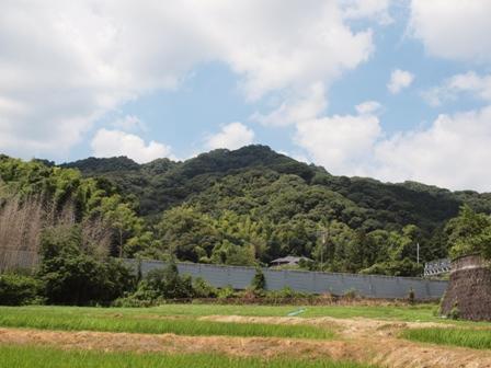 a天拝山P7231178