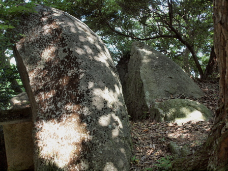 荒穂神社裏P7231121