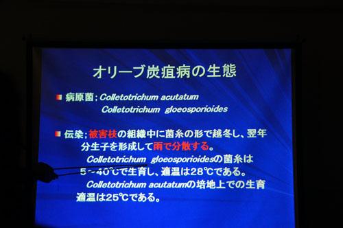 setouchi7.jpg