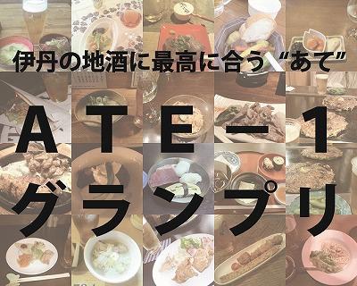 ATE-1画像