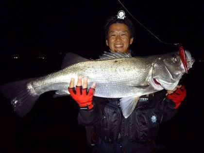2010 10 27 ヒラ 012 re