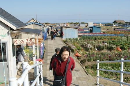 2010.1.30 花売り風景