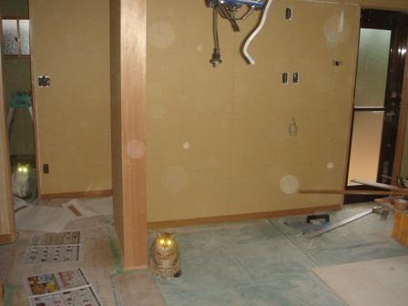 2010.6.8 猫の目