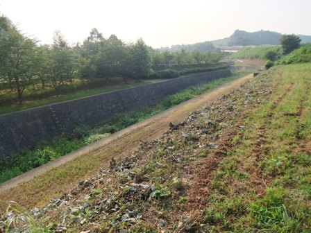 2010.7.23 矢那川の風景