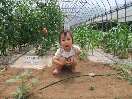 2010.7.25 トマトハウスと唯花