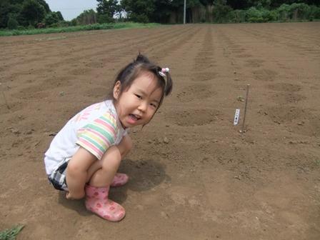 2010.7.25 大豆畑に遊ぶ唯花