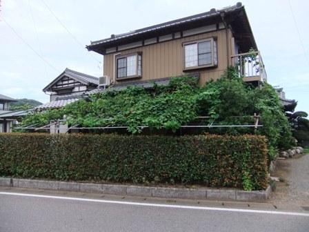 2010.8.7,8 中根邸