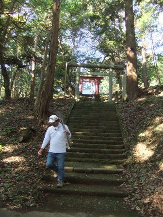 2010.9.19秋のみやなぎ015