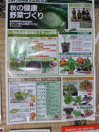 2010.9.23秋蒔きの種 008