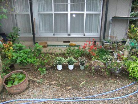 2010.10.23秋の花壇整理 003