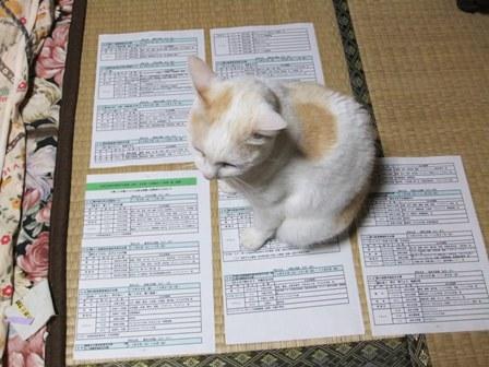2010.10.23鎌足地区文化祭カレンダー