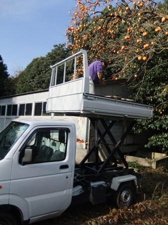 2010.11.28柿の収穫 018