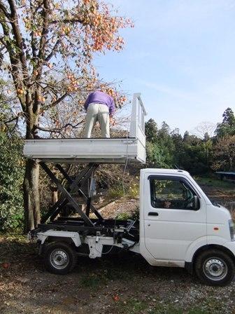 2010.11.28柿の収穫 016