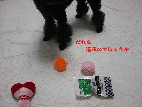 CIMG6084.jpg