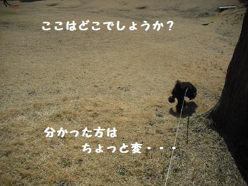 CIMG6138.jpg