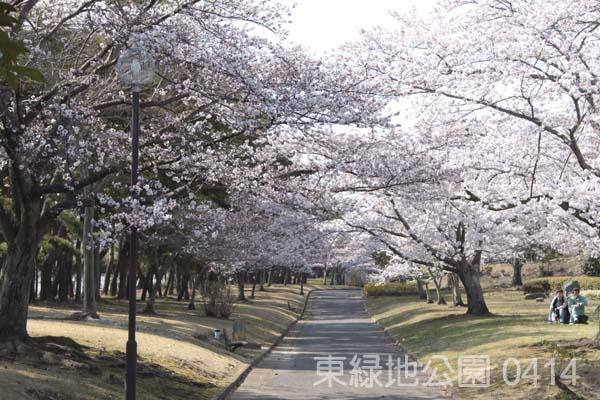 東緑地公園3