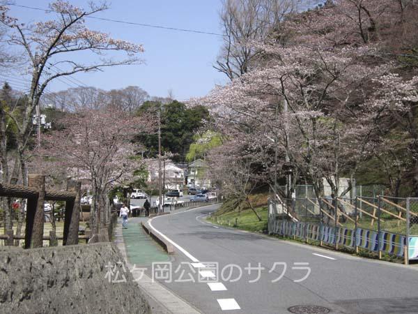 松ヶ岡06