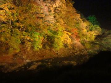 夏井川ライトアップ2