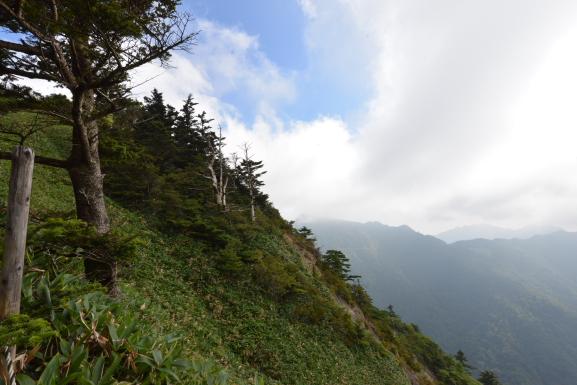 瓶ヶ森(男山)登山道から見える黒森山
