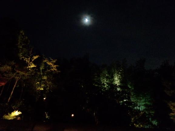 おぼろに月