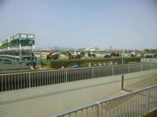 阪神競馬場ゲート地点