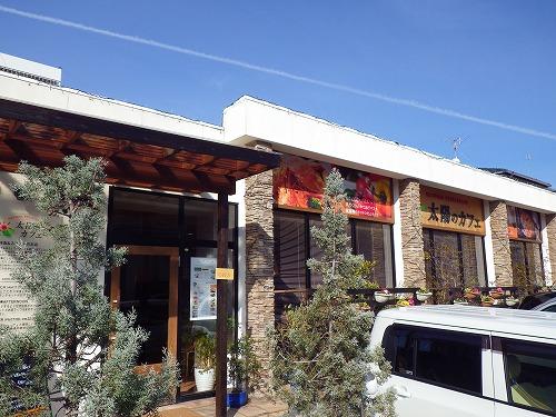 太陽のカフェ (6)