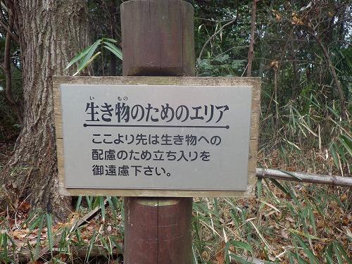 猪高緑地 (3)