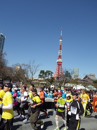 2013東京マラソン (8)
