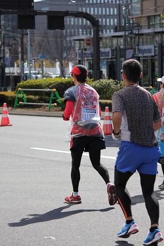 東京マラソン (16)
