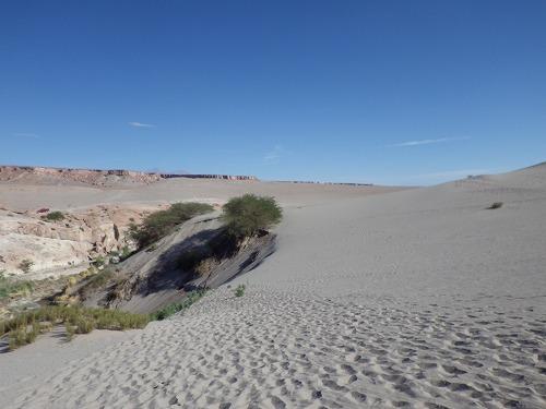 Atacama3dday (30)
