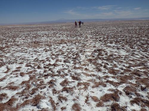 Atacama 4thday (22)
