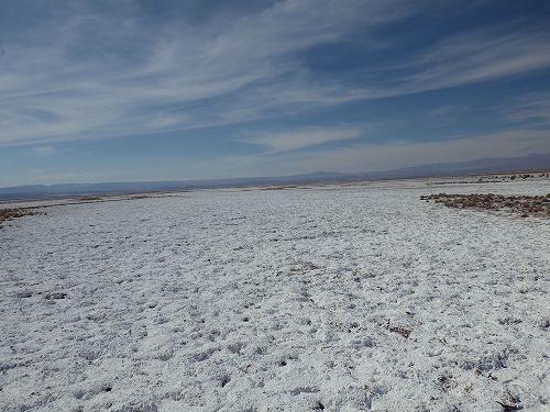 Atacama 4thday (27)