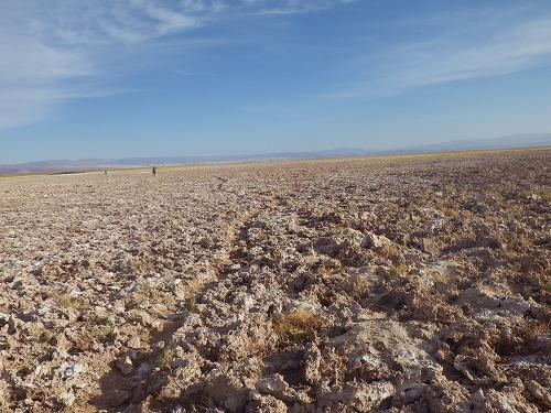 Atacama 5th day (15)