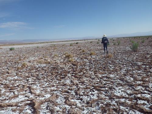 Atacama 5th day (17)