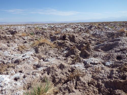 Atacama 5th day (19)