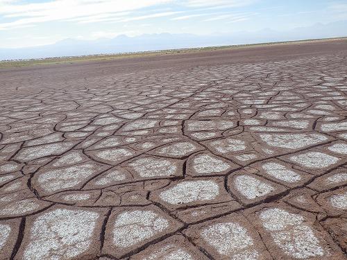 Atacama 5th day (21)