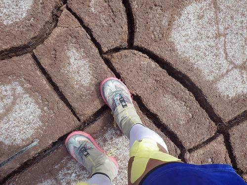 Atacama 5th day (22)
