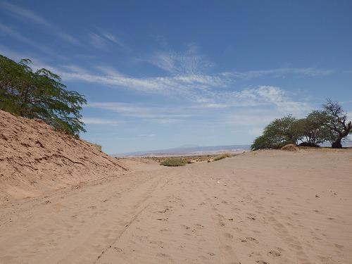 Atacama 5th day (25)